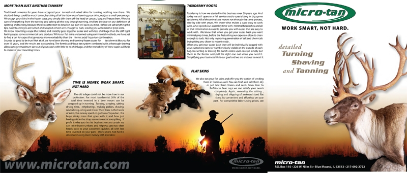 Microtan brochure layout & design